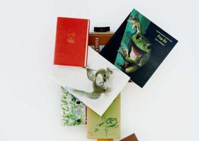 Vi elsker at give vores en inspirerende oplevelse, og derfor er MBK fyldt med inspirerende udsmykning. Har du selv set bøgerne på væggen i lokale 6?